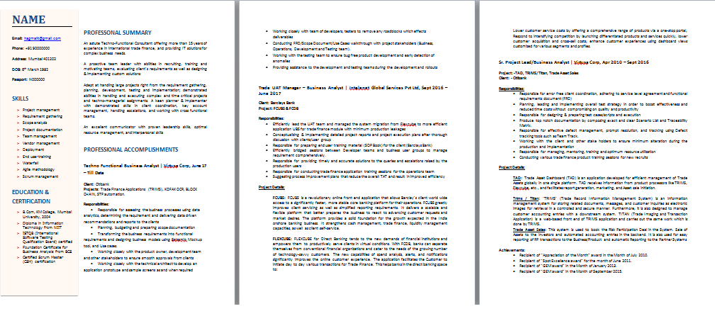 Techno functional resume template