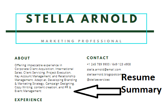 resume summary statement example